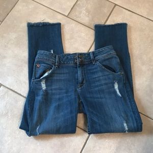 Hudson Collin Skinny Jeans , Size 27